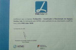 DISTINÇÃO IAPMEI- PME LÍDER 2020